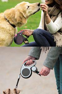 Guizangli per cani