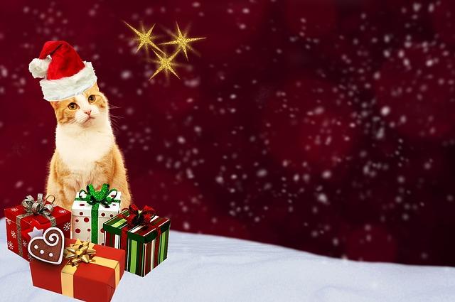 Facciamo i buoni! Nuova promozione Petingros Natale 2016