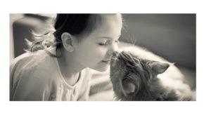 Come dimostra affetto il gatto